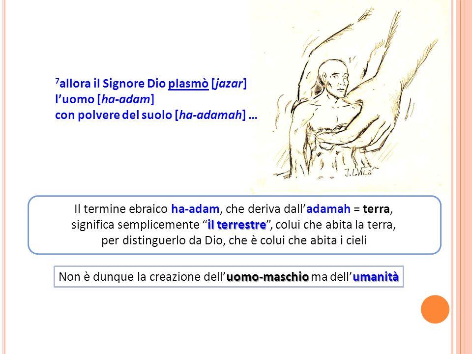7allora il Signore Dio plasmò [jazar] l'uomo [ha-adam]